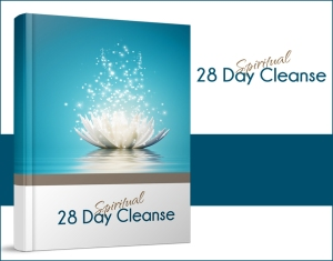 28DaySpiritualCleanseLarge(1)