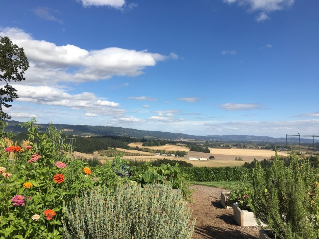 Beautiful views from Penner Ash winery. Spent more time being present instead of worrying about where we wanted to be next. I highly recommend it!
